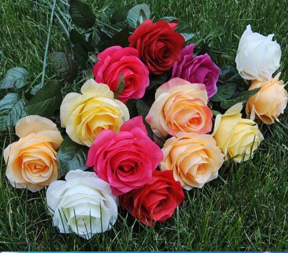 गुलाब के फूल के अनोखे औषधीय गुणों को जानें
