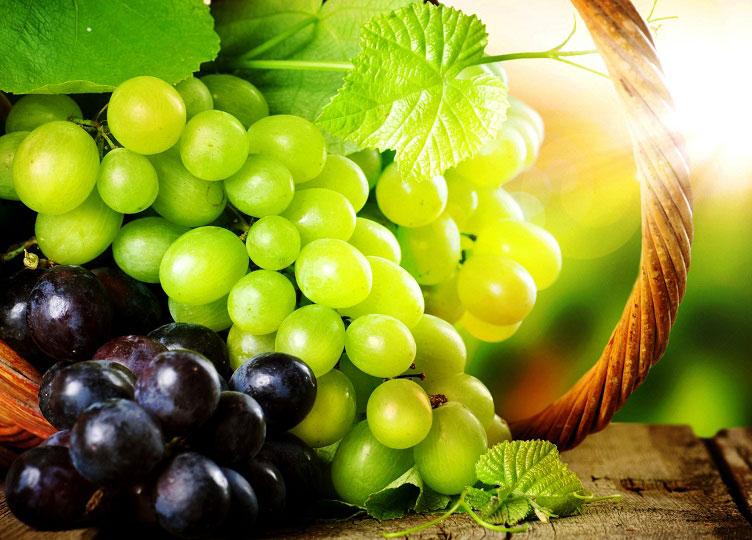 अंगूर में छिपे हैं इन बीमारियों के इलाज